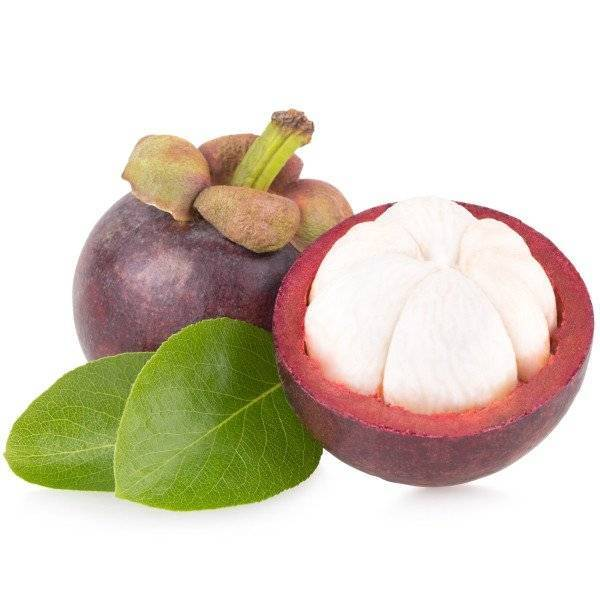Mangosteen Tray 500g